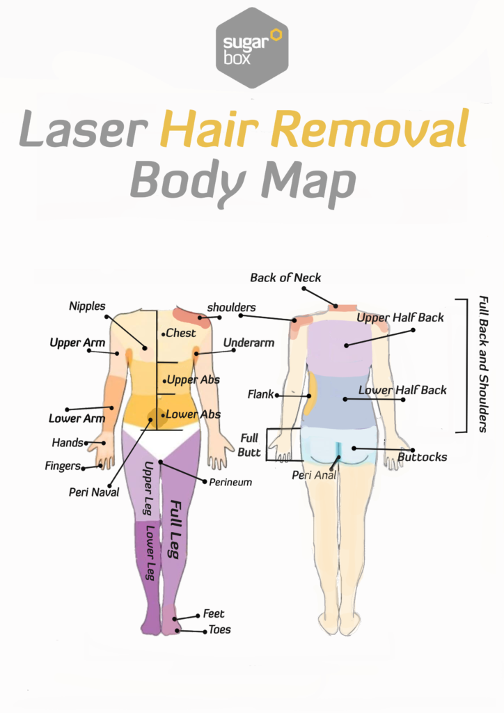 Body Laser Hair Removal